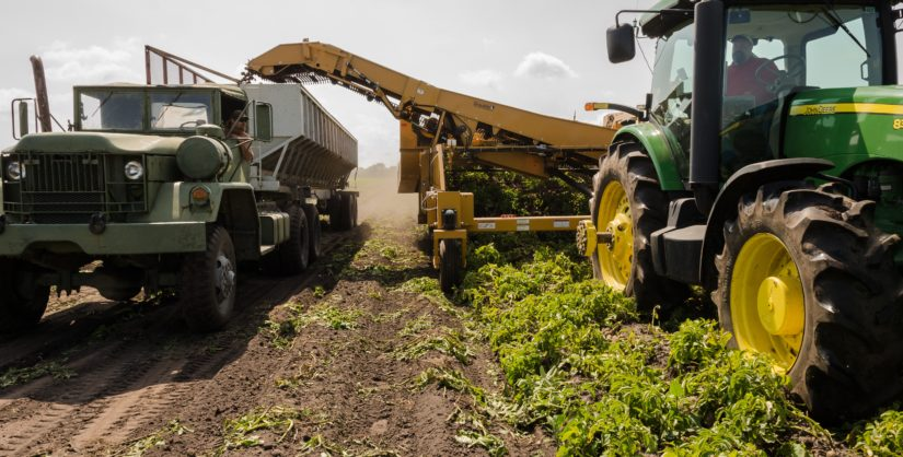lodos sector agricola
