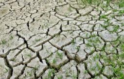 planes especiales de sequía