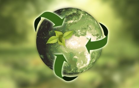 Borrador del Plan de Contratación Pública Ecológica 2018-2025