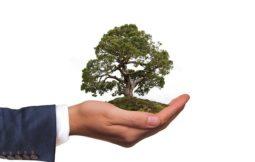 Responsabilidad ambienta