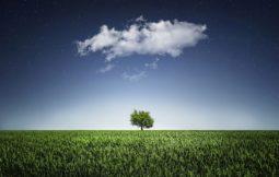 responsabilidad ambiental de las empresas