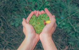person-holding-green-grains-1230157