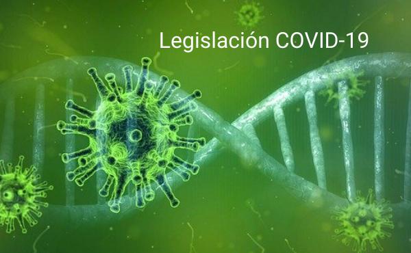 legislacion covid 19