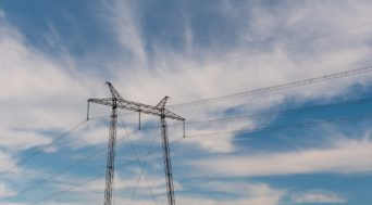 medidas-proteccion-avifauna-electrocucion-lineas-alta-tension
