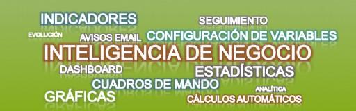 Inteligencia_Negocio8465