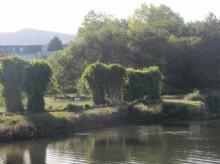 Pontevedra_IslaEsculturas1716