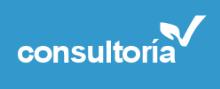 logo_consultoria33