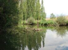plan_hidrologico33