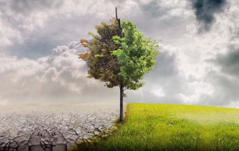 Abierta a consulta pública el anteproyecto de Ley de Cambio Climático y Transición Energética