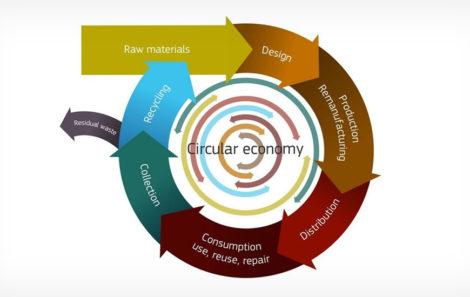 Economia Circular, Liderar a transição