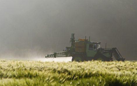 Disponibilização no mercado e utilização de produtos biocidas