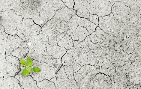 Modificación del Reglamento de actividades potencialmente contaminantes del suelo