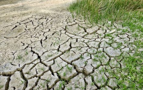 Consulta pública para la elaboración de planes especiales de sequía