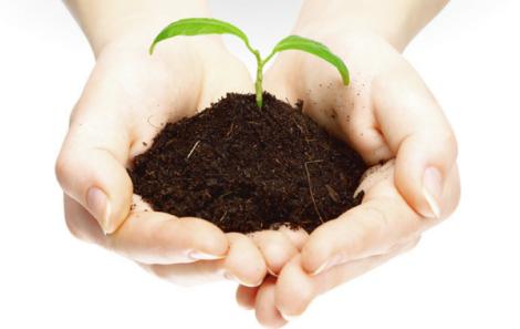 Nueva ley que obligará a las empresas a divulgar contenidos sociales y medioambientales